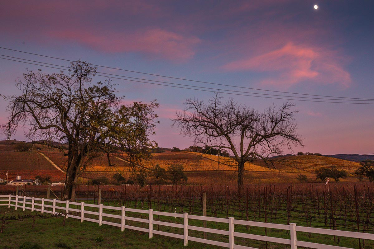 Sunset at Salt and Stone Kenwood